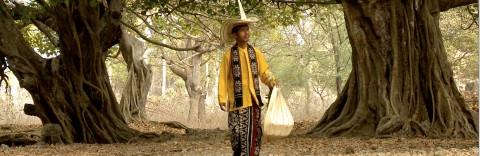 Melihat Indonesia Memetik Sasandu di Nusa Lontar